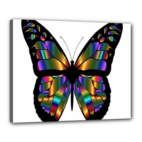 Abstract Animal Art Butterfly Canvas 20  x 16