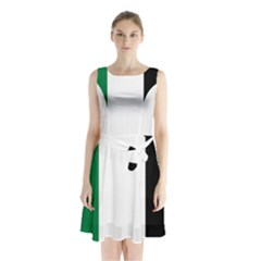Palestine flag Sleeveless Chiffon Waist Tie Dress