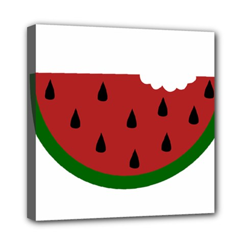 Food Slice Fruit Bitten Watermelon Mini Canvas 8  x 8
