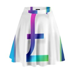 Icon Pound Money Currency Symbols High Waist Skirt
