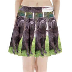 Shar Pei Longhair Sitting Pleated Mini Skirt