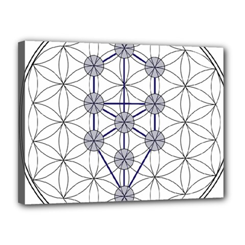 Tree Of Life Flower Of Life Stage Canvas 16  x 12