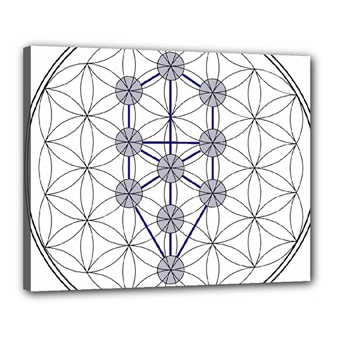 Tree Of Life Flower Of Life Stage Canvas 20  x 16