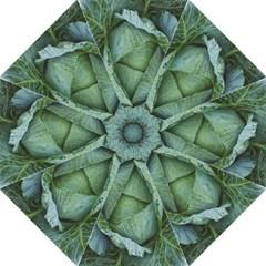 Bright Cabbage Color Dew Flora Hook Handle Umbrellas (Medium)
