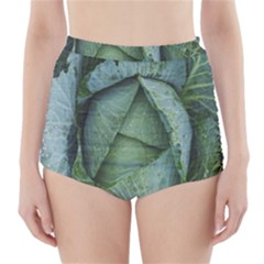 Bright Cabbage Color Dew Flora High-Waisted Bikini Bottoms