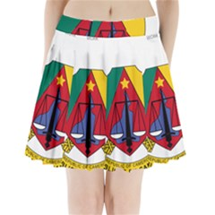 Coat of Arms of Cameroon  Pleated Mini Skirt
