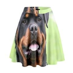 Rottweiler High Waist Skirt