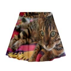 Bengal Laying Mini Flare Skirt