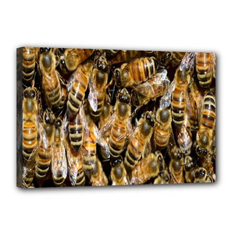 Honey Bee Water Buckfast Canvas 18  x 12