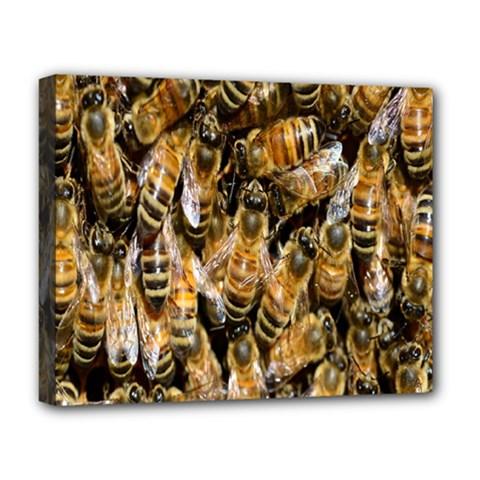 Honey Bee Water Buckfast Deluxe Canvas 20  X 16
