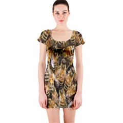 Honey Bee Water Buckfast Short Sleeve Bodycon Dress