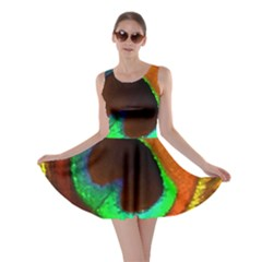 Peacock Feather Eye Skater Dress