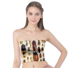 Insect Collection Tube Top