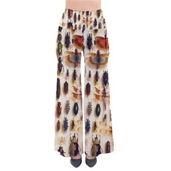 Insect Collection Pants