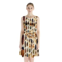 Insect Collection Sleeveless Chiffon Waist Tie Dress