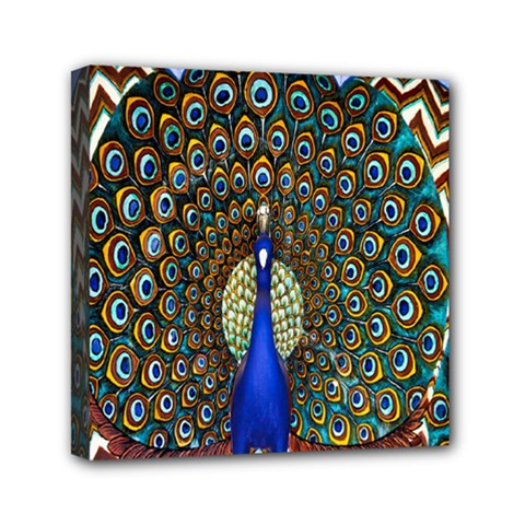 The Peacock Pattern Mini Canvas 6  x 6