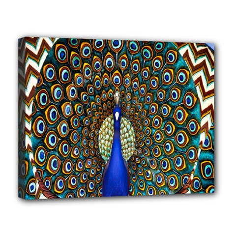 The Peacock Pattern Canvas 14  x 11