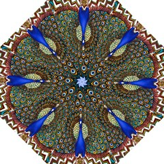 The Peacock Pattern Straight Umbrellas