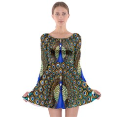 The Peacock Pattern Long Sleeve Skater Dress