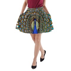 The Peacock Pattern A Line Pocket Skirt