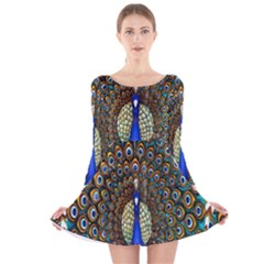 The Peacock Pattern Long Sleeve Velvet Skater Dress