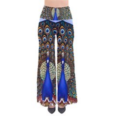 The Peacock Pattern Pants
