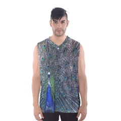 Peacock Four Spot Feather Bird Men s Basketball Tank Top