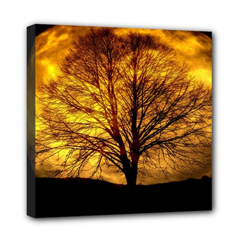 Moon Tree Kahl Silhouette Mini Canvas 8  X 8