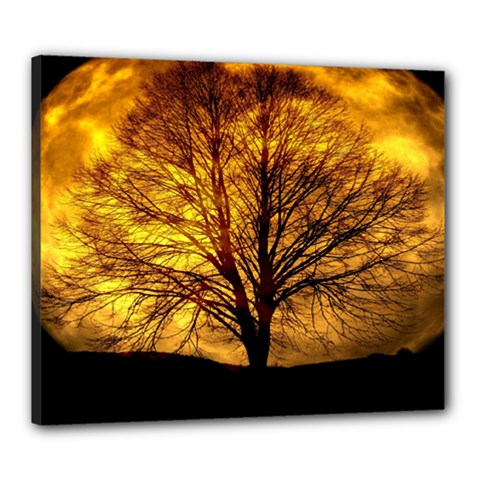 Moon Tree Kahl Silhouette Canvas 24  x 20