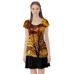 Moon Tree Kahl Silhouette Short Sleeve Skater Dress