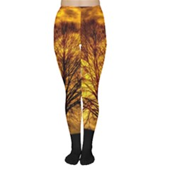 Moon Tree Kahl Silhouette Women s Tights