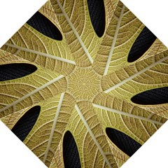 Yellow Leaf Fig Tree Texture Folding Umbrellas