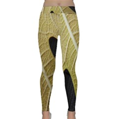 Yellow Leaf Fig Tree Texture Classic Yoga Leggings