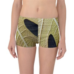 Yellow Leaf Fig Tree Texture Reversible Bikini Bottoms