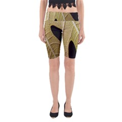 Yellow Leaf Fig Tree Texture Yoga Cropped Leggings