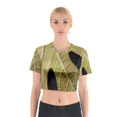 Yellow Leaf Fig Tree Texture Cotton Crop Top