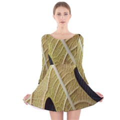 Yellow Leaf Fig Tree Texture Long Sleeve Velvet Skater Dress