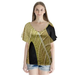 Yellow Leaf Fig Tree Texture Flutter Sleeve Top