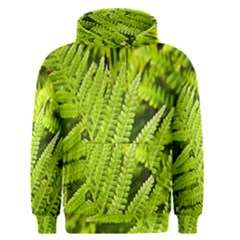 Fern Nature Green Plant Men s Pullover Hoodie