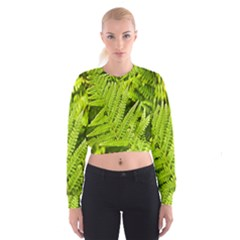 Fern Nature Green Plant Women s Cropped Sweatshirt