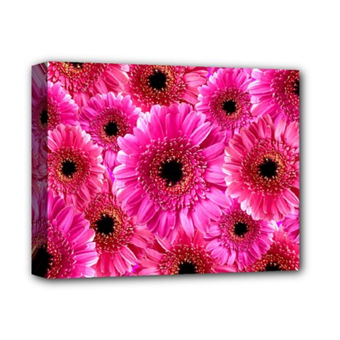 Gerbera Flower Nature Pink Blosso Deluxe Canvas 14  x 11