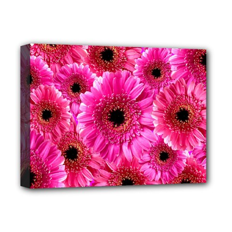 Gerbera Flower Nature Pink Blosso Deluxe Canvas 16  x 12
