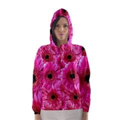 Gerbera Flower Nature Pink Blosso Hooded Wind Breaker (women)