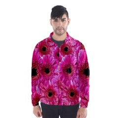 Gerbera Flower Nature Pink Blosso Wind Breaker (Men)