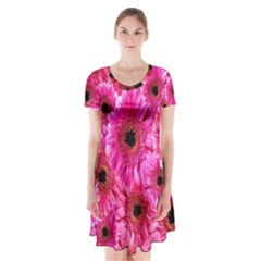 Gerbera Flower Nature Pink Blosso Short Sleeve V-neck Flare Dress