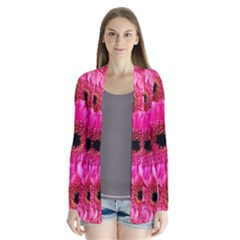 Gerbera Flower Nature Pink Blosso Cardigans