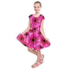 Gerbera Flower Nature Pink Blosso Kids  Short Sleeve Dress