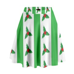 Holly High Waist Skirt