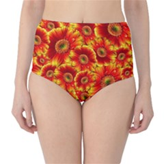 Gerbera Flowers Blossom Bloom High-Waist Bikini Bottoms