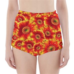 Gerbera Flowers Blossom Bloom High Waisted Bikini Bottoms